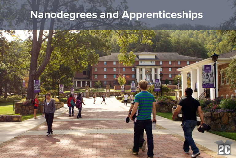Nanodegrees and Apprenticeships