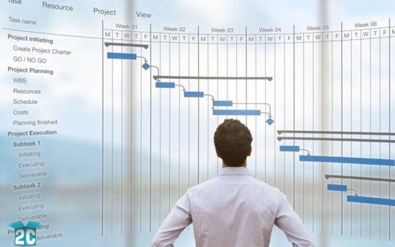 Pulling off a Big Business Project – 5 Survival Tips